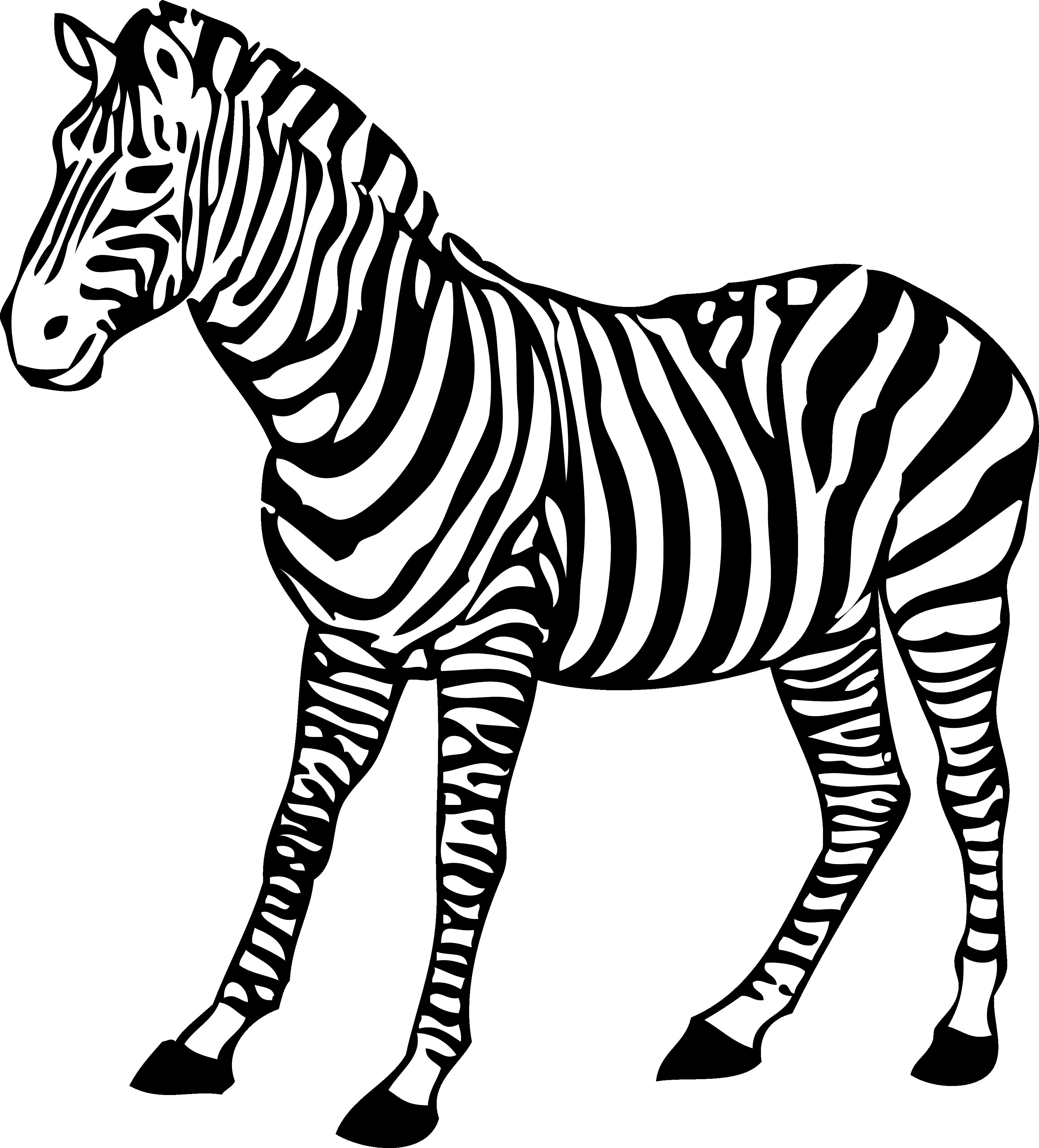 Hdpng - Zebra, Transparent background PNG HD thumbnail