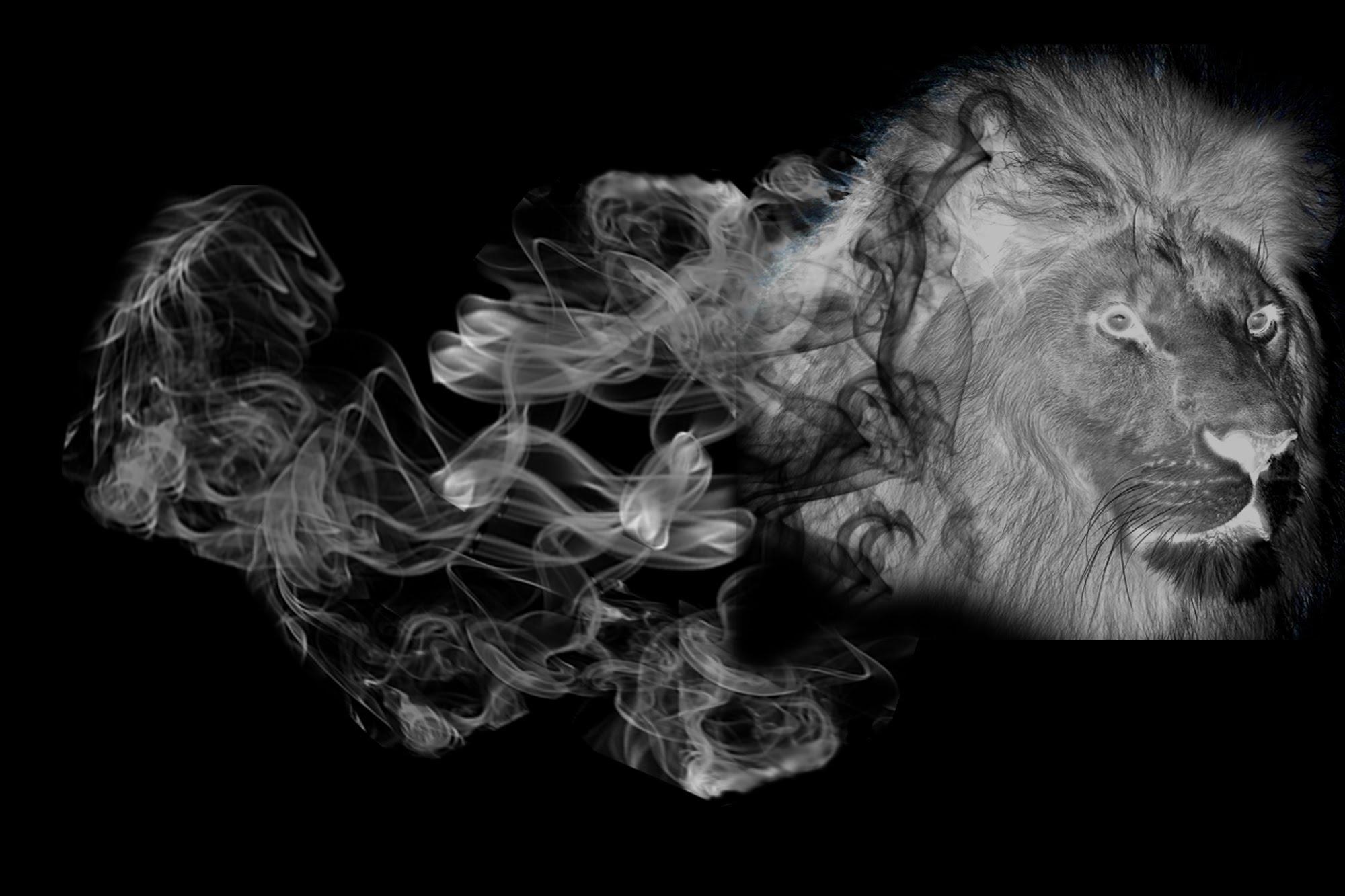 Adobe Photoshop How To Make A Smoke Effect - Smoke Effect, Transparent background PNG HD thumbnail