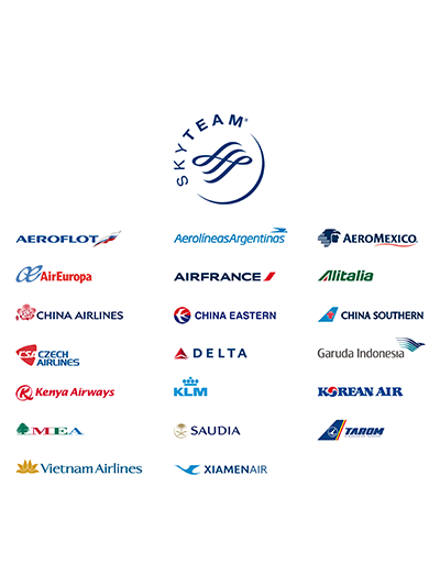 Loyalty Pays Off - Aeromexico Skyteam, Transparent background PNG HD thumbnail
