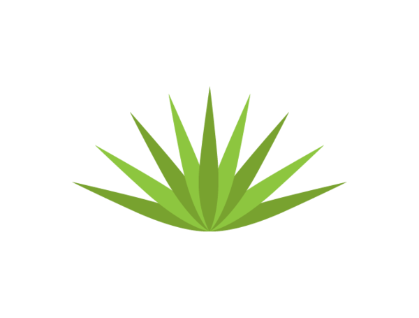 Agave Png Hdpng.com 600 - Agave, Transparent background PNG HD thumbnail