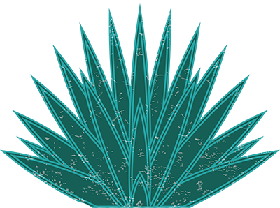 Agave Heritage Festival - Agave, Transparent background PNG HD thumbnail
