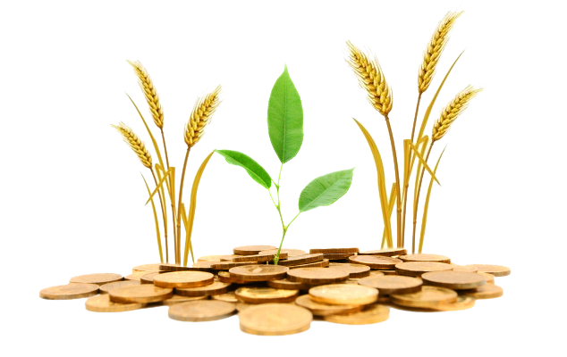 Agriculture Png Png Image - Agriculture, Transparent background PNG HD thumbnail