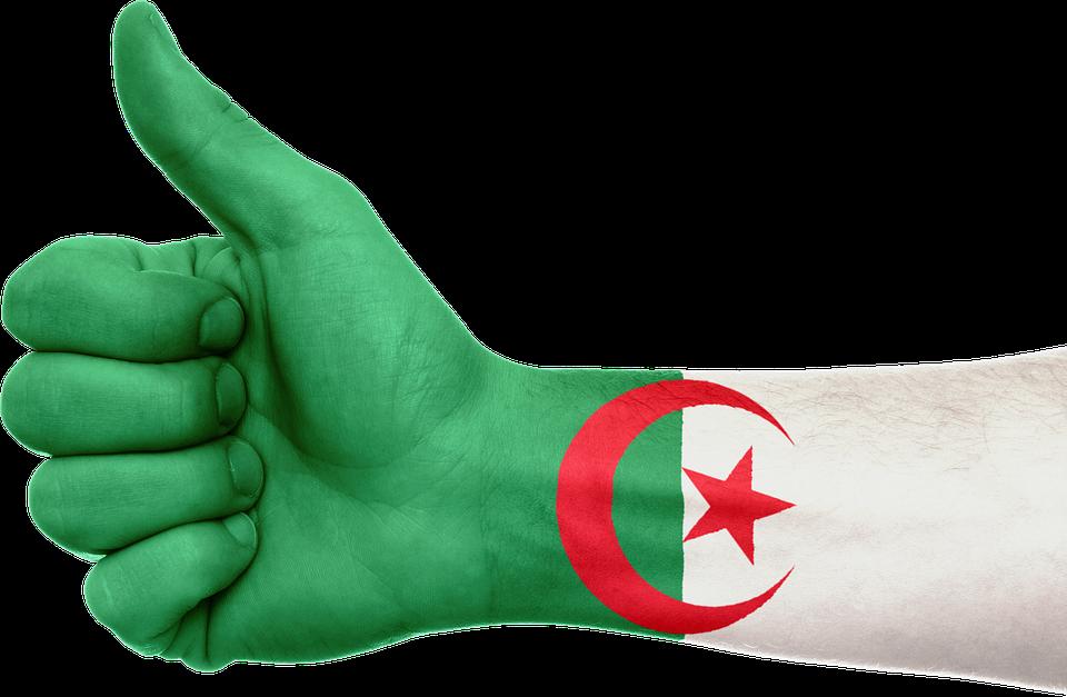 Algeria, Hand, Flag, Patriotic, Patriotism, Africa - Algeria, Transparent background PNG HD thumbnail