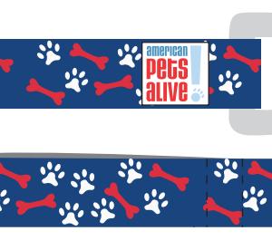 American Pets Alive! Leash U2013 Blue - American Pets, Transparent background PNG HD thumbnail