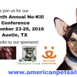 American Pets Alive! Seventh Annual No Kill Conference Photo #1 Hdpng.com  - American Pets, Transparent background PNG HD thumbnail
