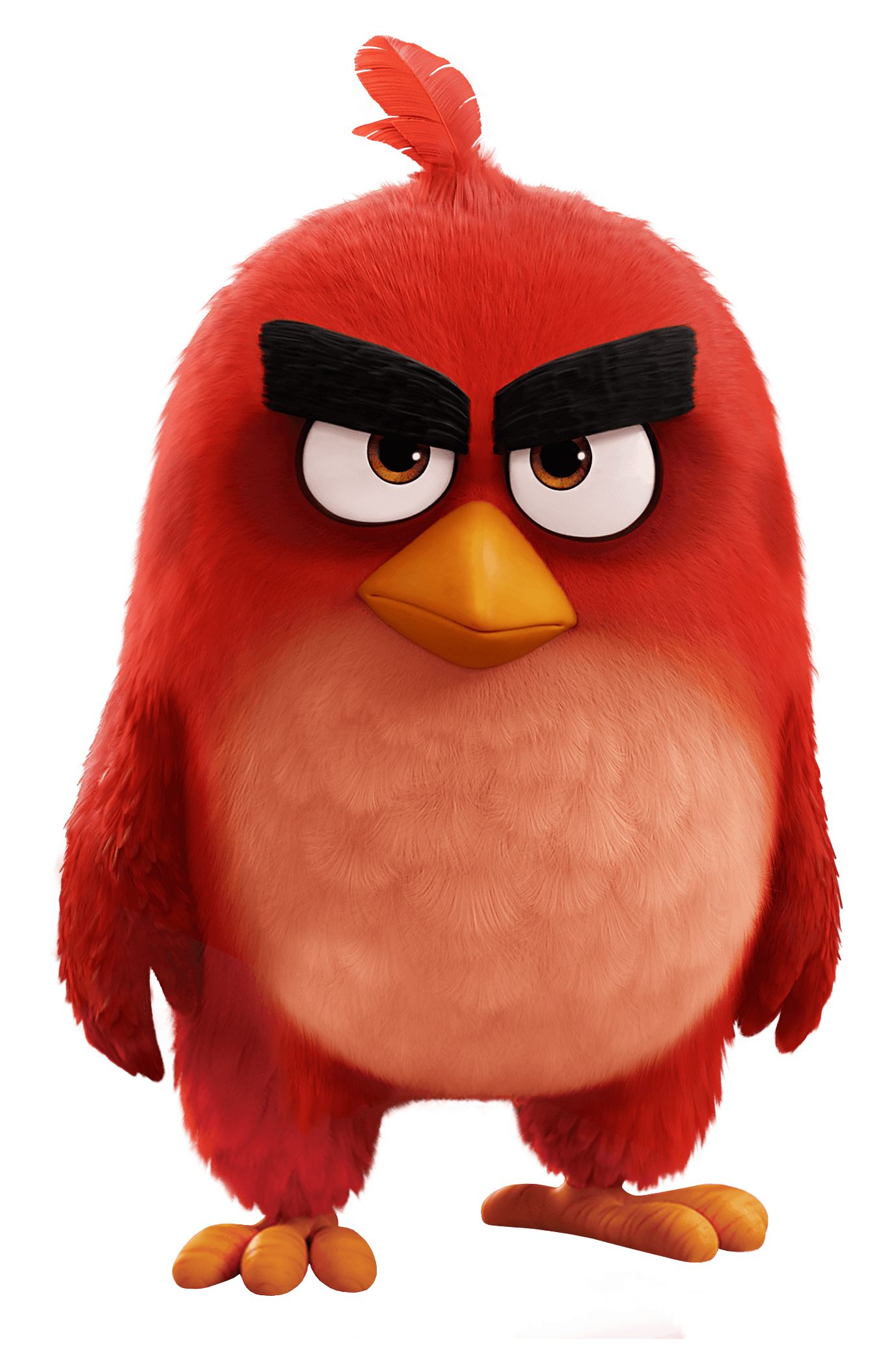 Angry Birds Movie Red Bird - Angry Birds, Transparent background PNG HD thumbnail