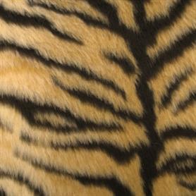 Close Up - Animal Fur, Transparent background PNG HD thumbnail