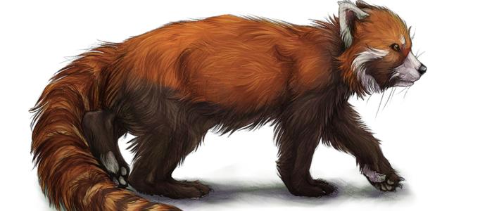 Drawing A Realistic Fur Animal - Animal Fur, Transparent background PNG HD thumbnail