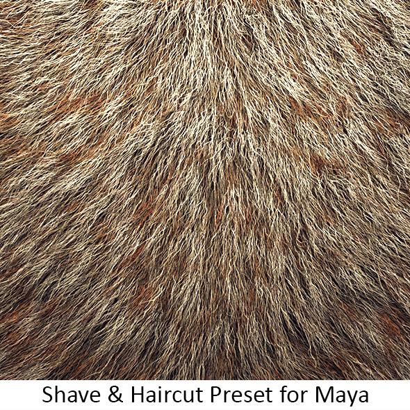 Shave Animal Fur4   3Docean Item For Sale - Animal Fur, Transparent background PNG HD thumbnail