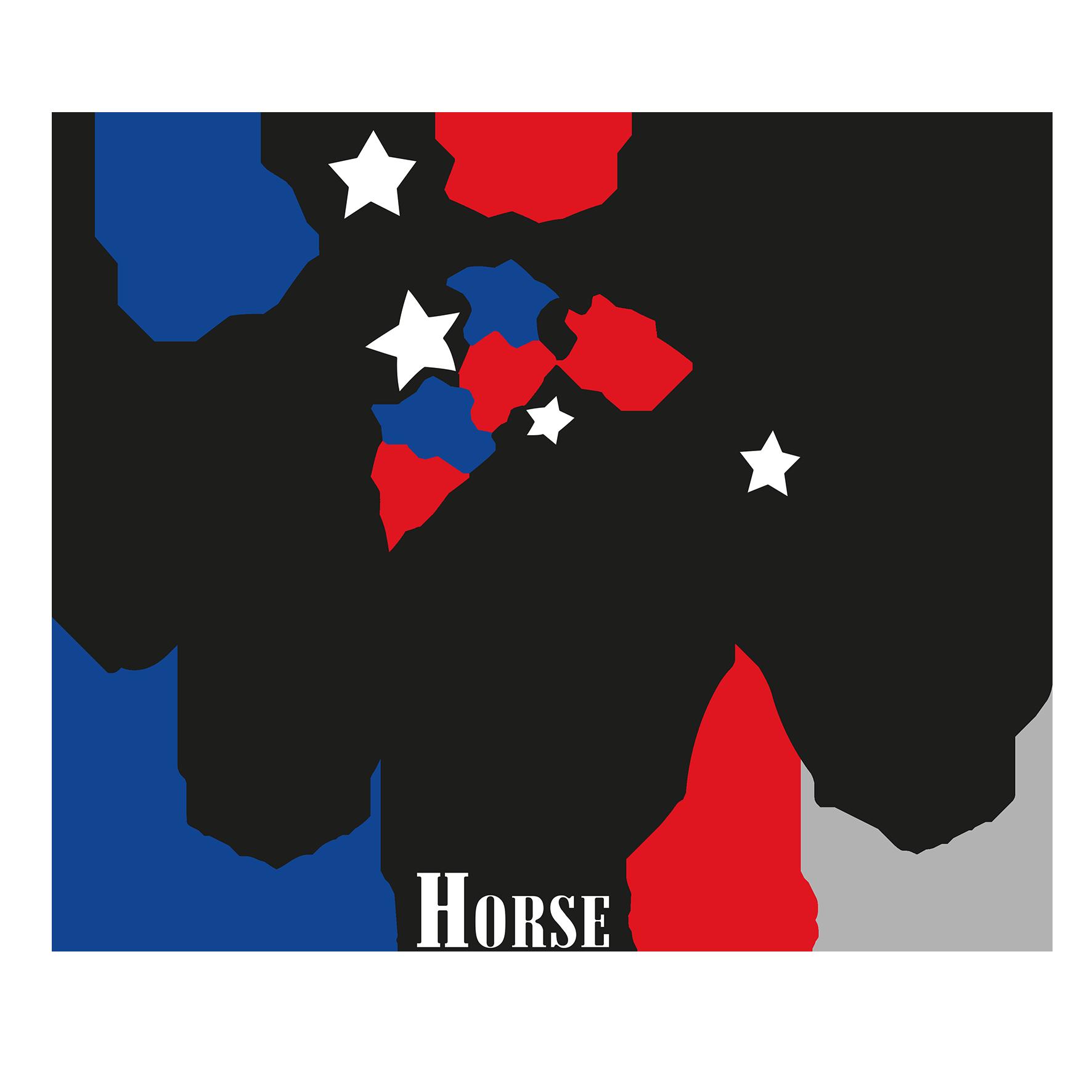 Appaloosa Horse Club Logo Png - Final Final Logo, Transparent background PNG HD thumbnail