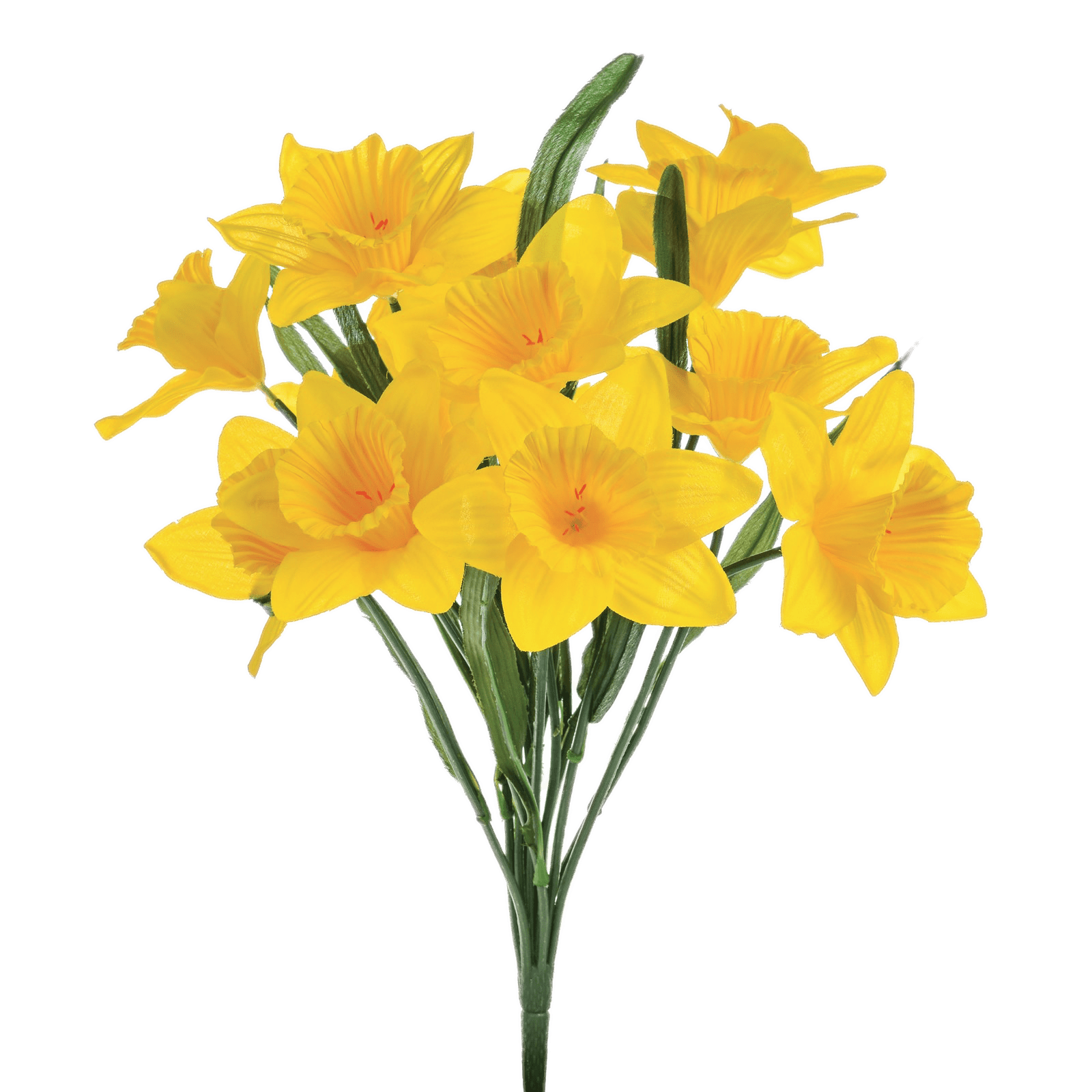 Artificial Daffodils - Daffodils, Transparent background PNG HD thumbnail