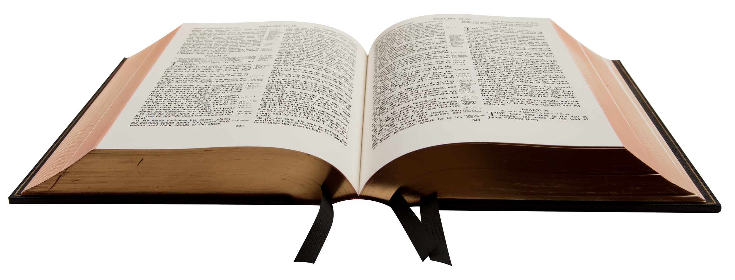 Bible Book PNG