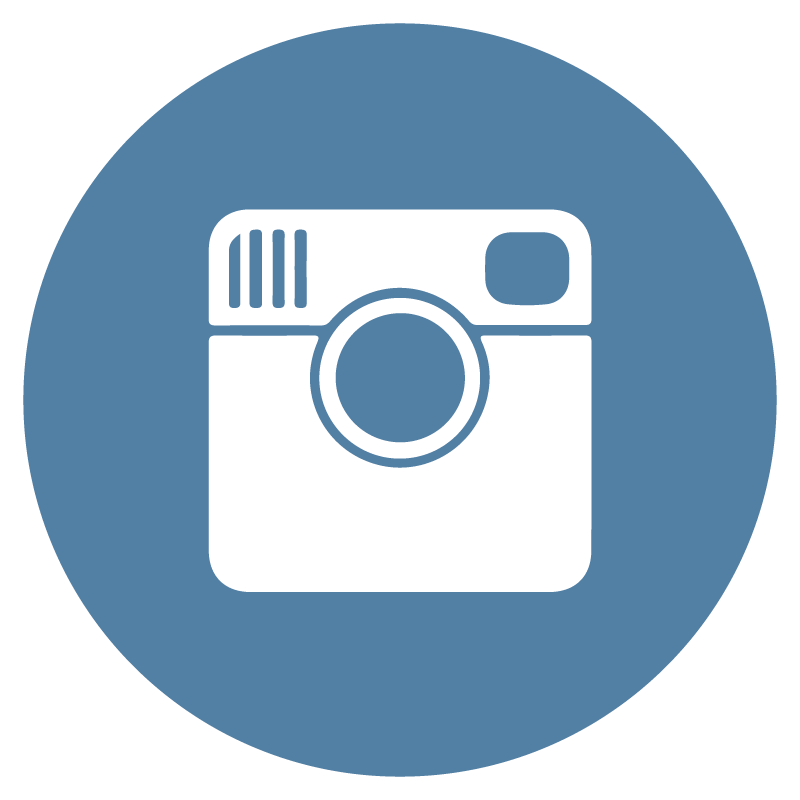 Instagram Flat Icon Circle Vector - Bicester Computers Vector, Transparent background PNG HD thumbnail
