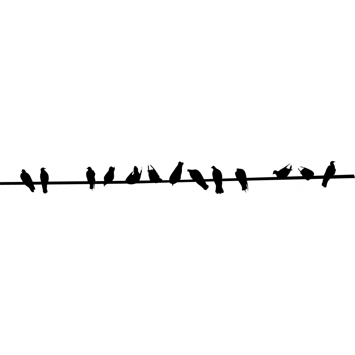 Birds On Wire; Birds On Wire - Birds On A Wire, Transparent background PNG HD thumbnail