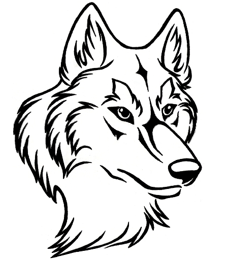 447X512 Line Art Wolf Head - Black And White Wolf, Transparent background PNG HD thumbnail