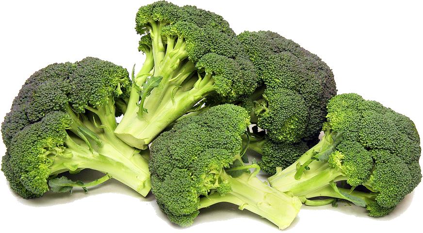 Broccoli Png Photos - Broccoli, Transparent background PNG HD thumbnail