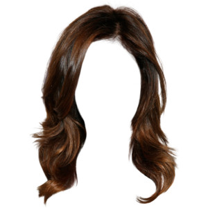 Hairstyle424.png (500×698) - Brown Wig, Transparent background PNG HD thumbnail