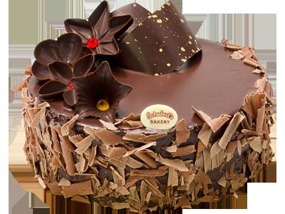 Chocolate Cake PNG HD