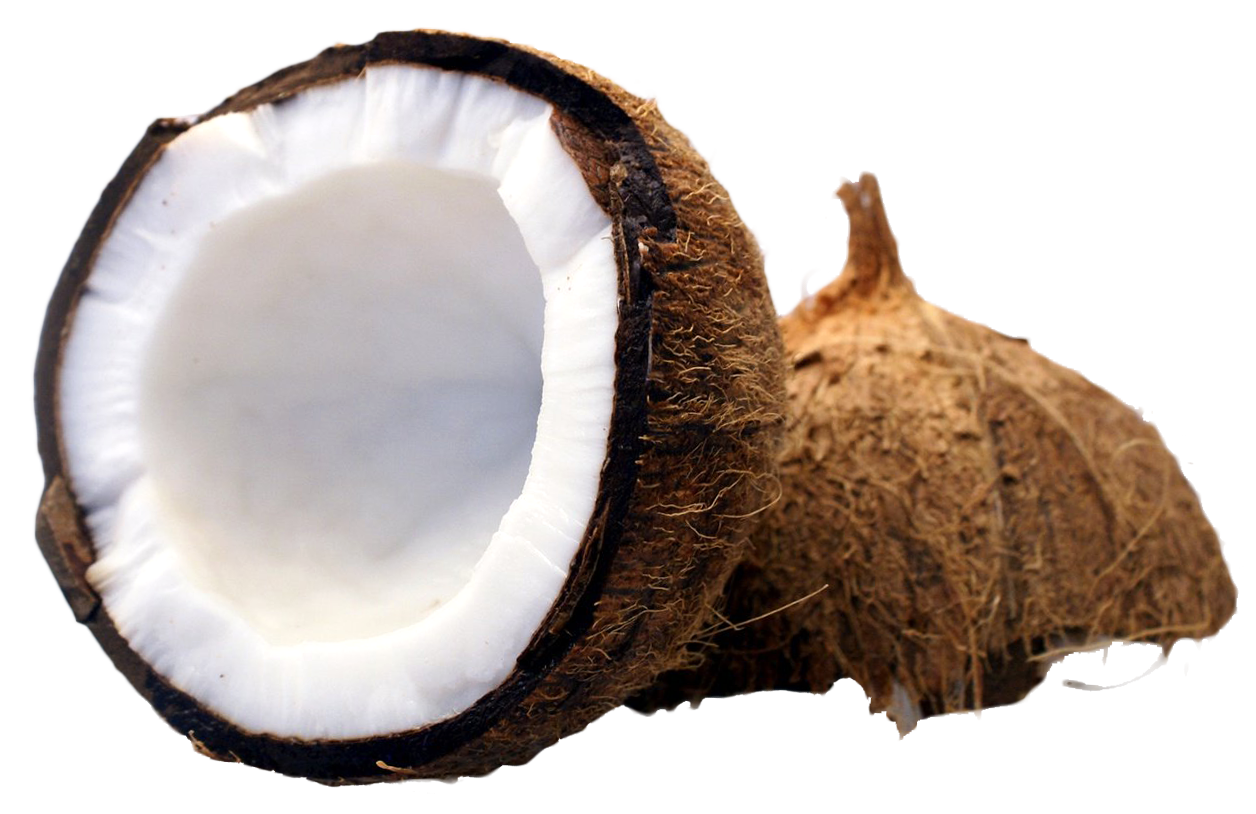 Coconut Cut In Half Png Image - Coconut, Transparent background PNG HD thumbnail