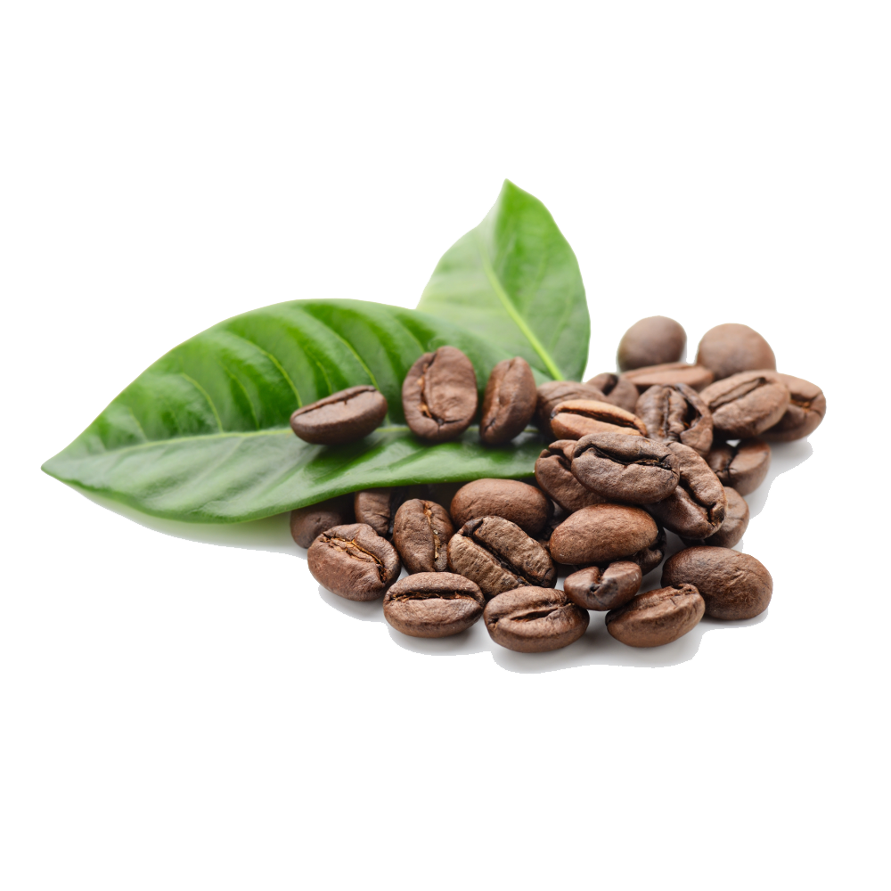 Coffee Beans Free Png Image Png Image - Coffee, Transparent background PNG HD thumbnail