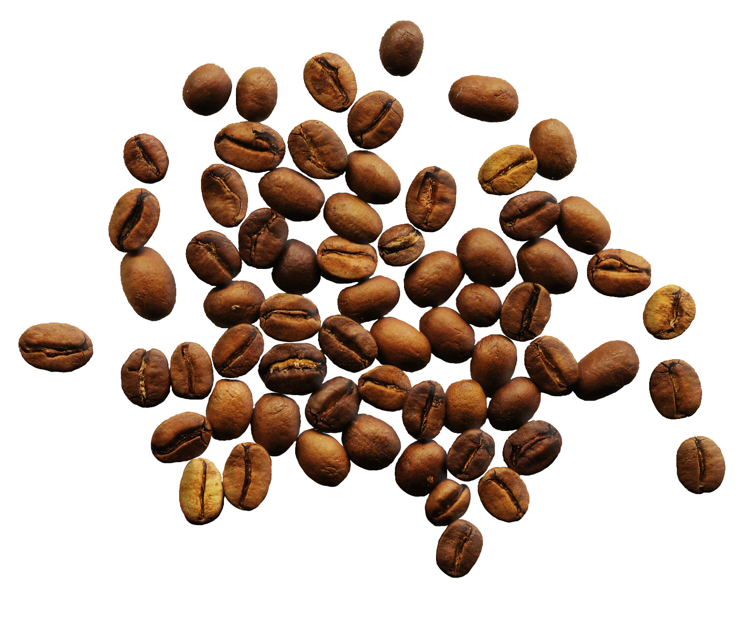 Coffee Beans Png Image - Coffee, Transparent background PNG HD thumbnail