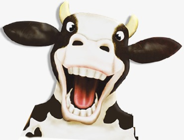 Cows, Cartoon, Cows, Cows Vector Png And Psd - Cow Head, Transparent background PNG HD thumbnail