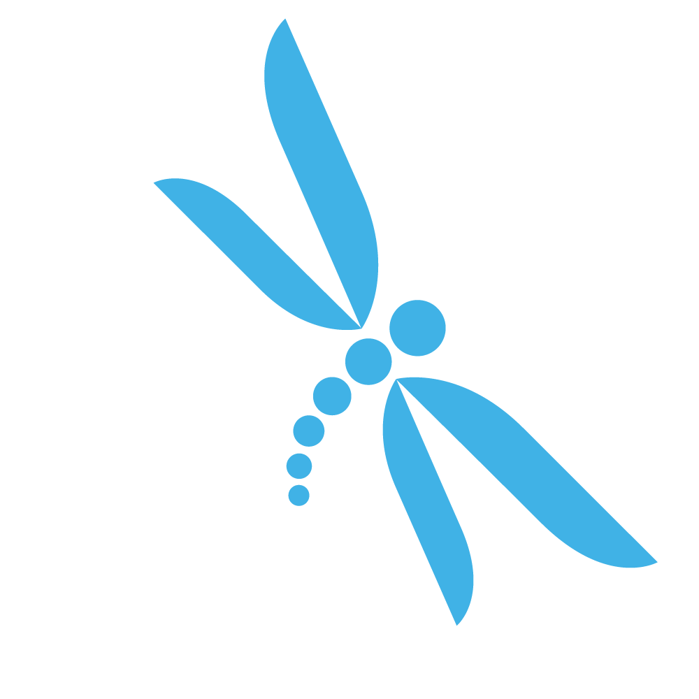 Dragonfly.png (1000×1000) - Dragonfly, Transparent background PNG HD thumbnail