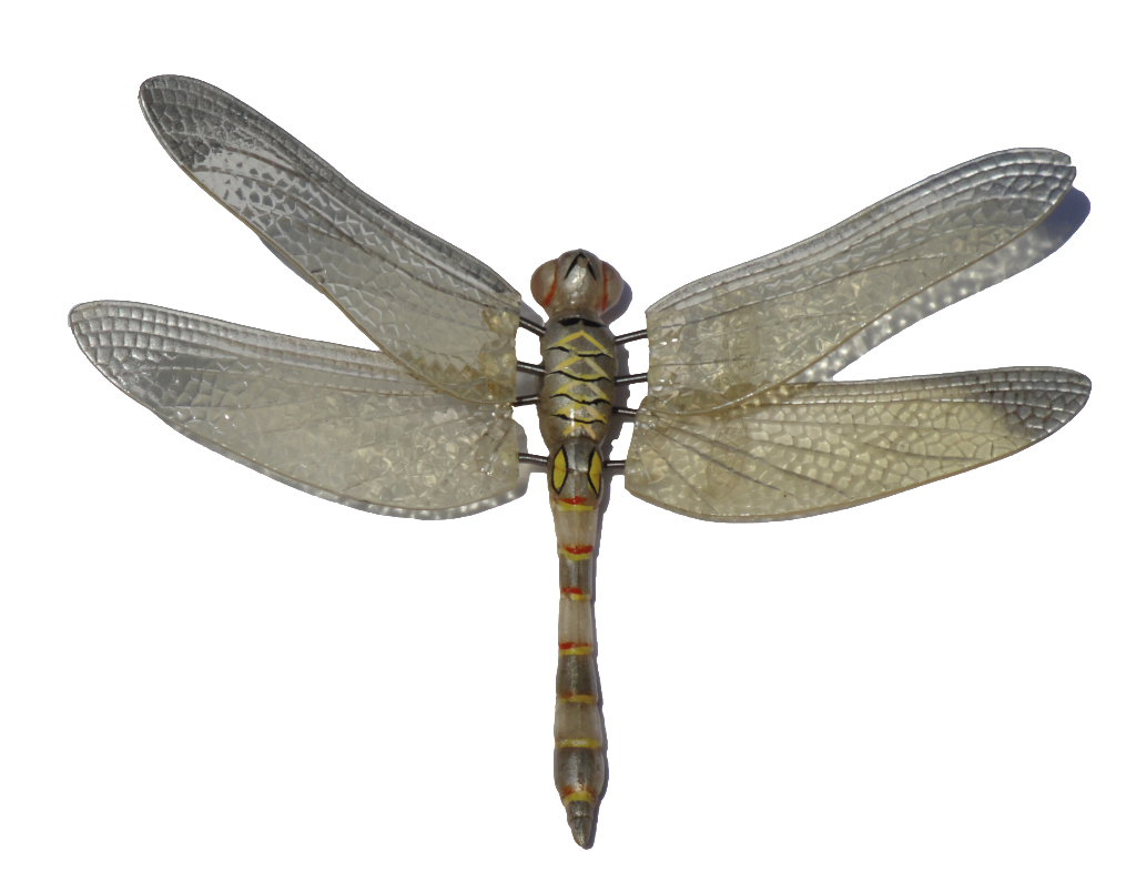 Dragonfly20.png (1024×804) - Dragonfly, Transparent background PNG HD thumbnail