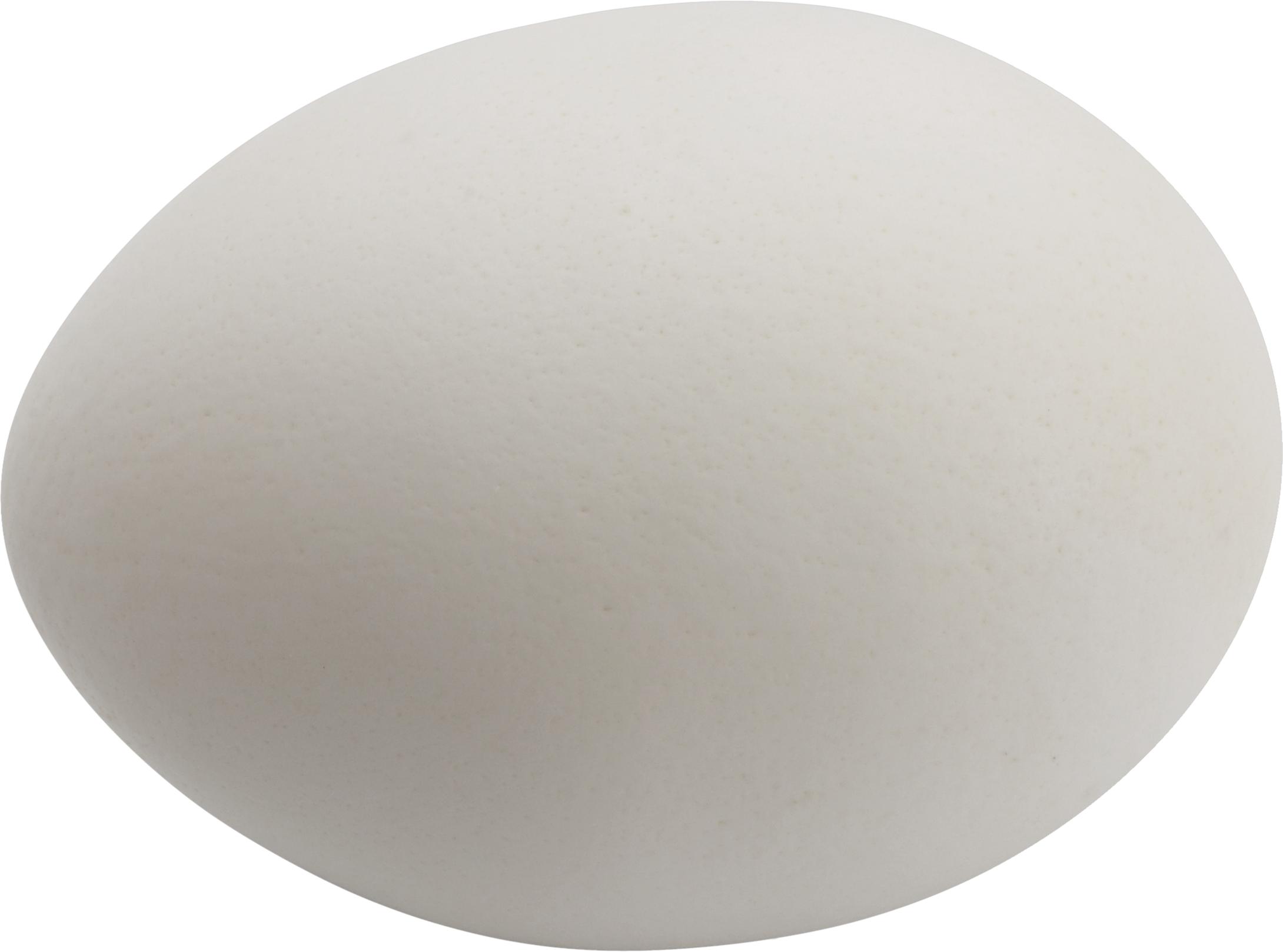 Egg HD PNG