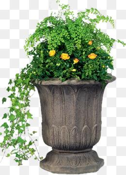 Flower Pot Png - Ceramic Flower Pots, Small Fresh, Ceramic Pots, Flower Pot Png Image, Transparent background PNG HD thumbnail