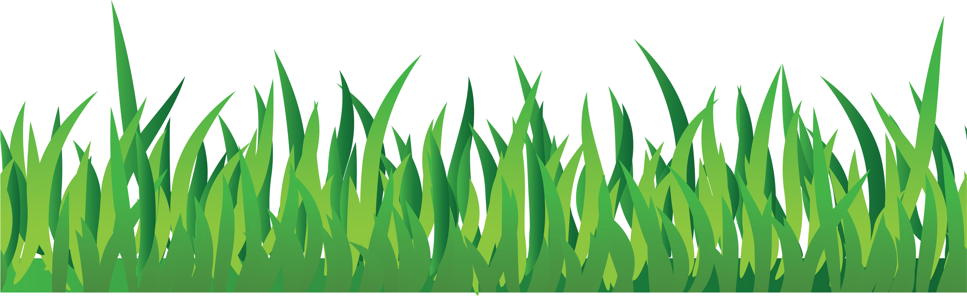 Grass Png Image, Green Grass Png Picture - Grass, Transparent background PNG HD thumbnail