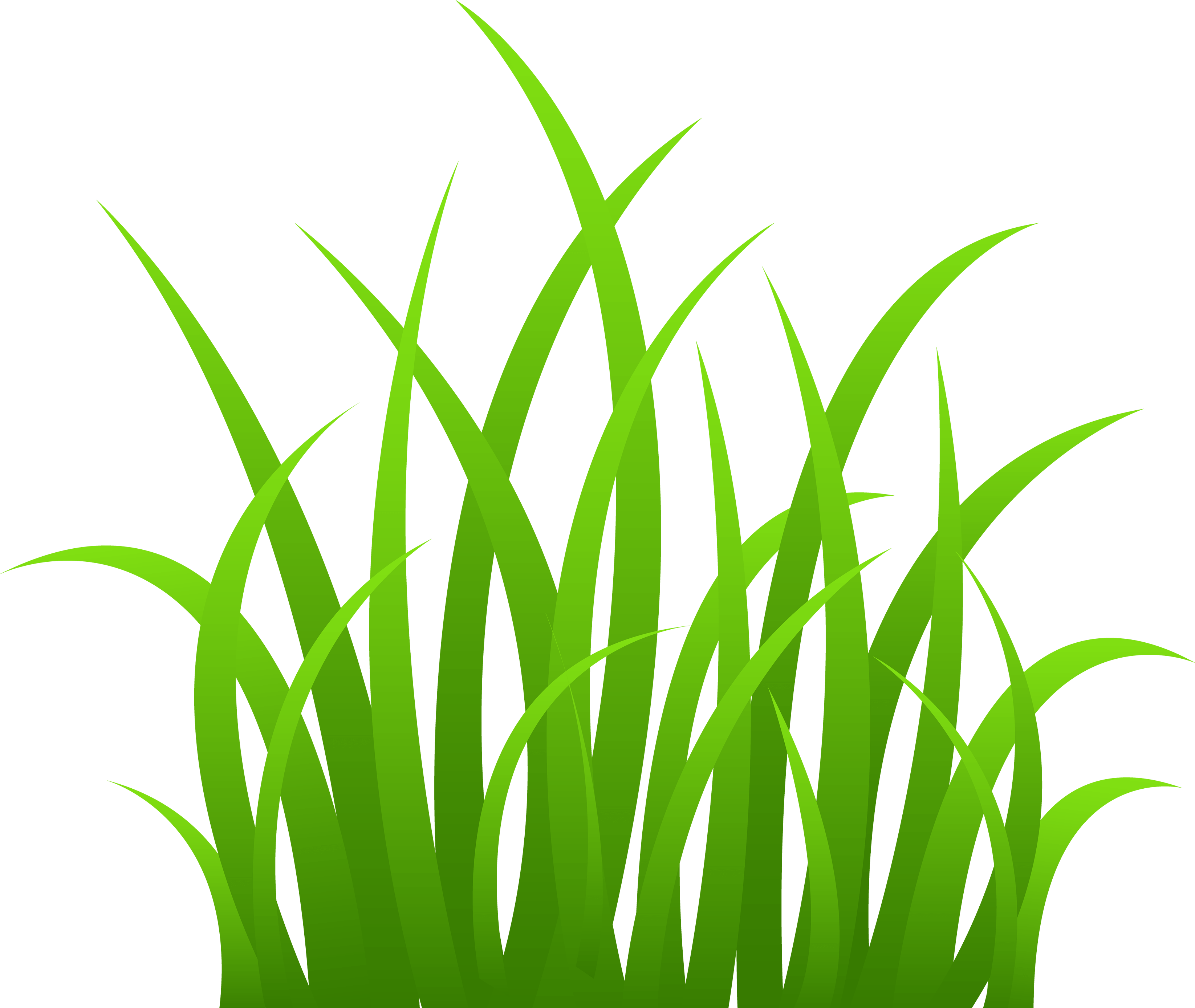Grass Png Image Green Grass Png Picture Png Image - Grass, Transparent background PNG HD thumbnail