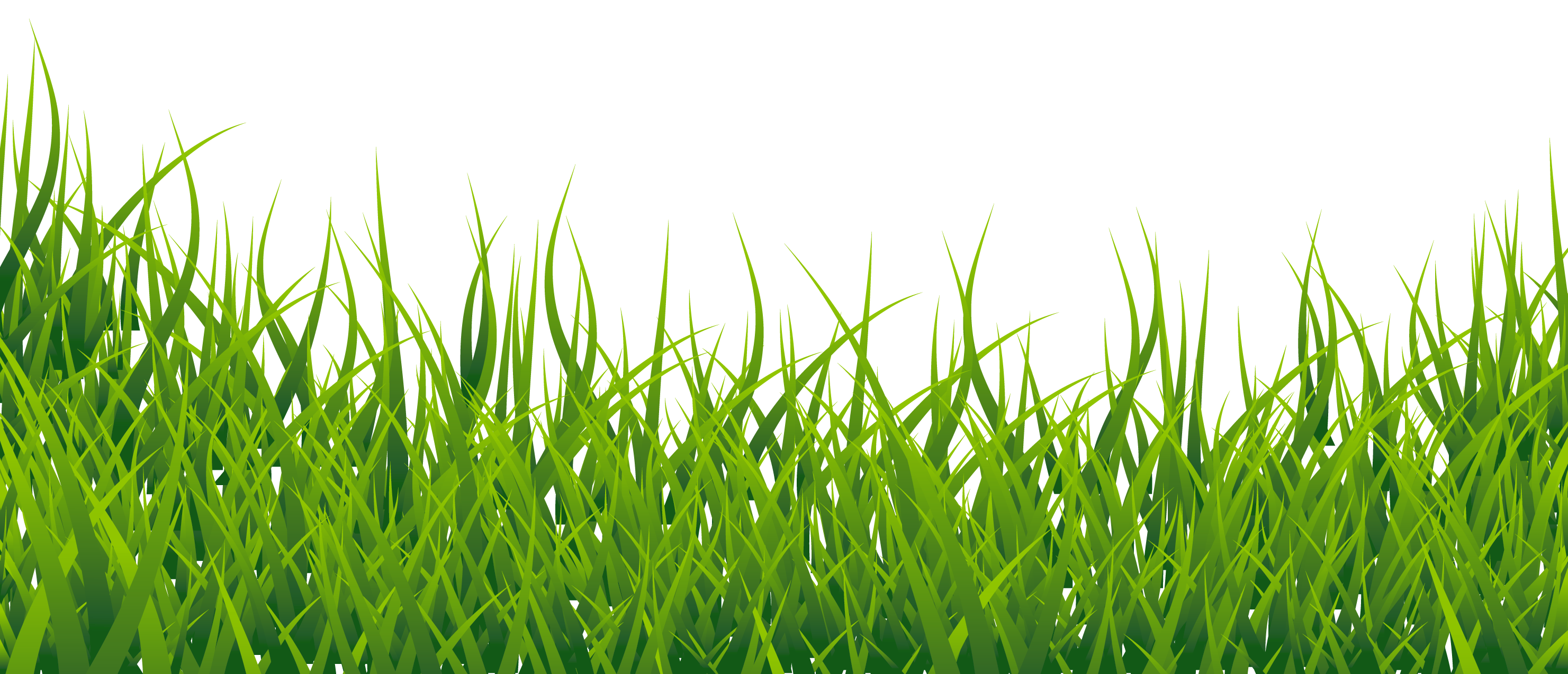 Grass Png Transparent Image - Grass, Transparent background PNG HD thumbnail