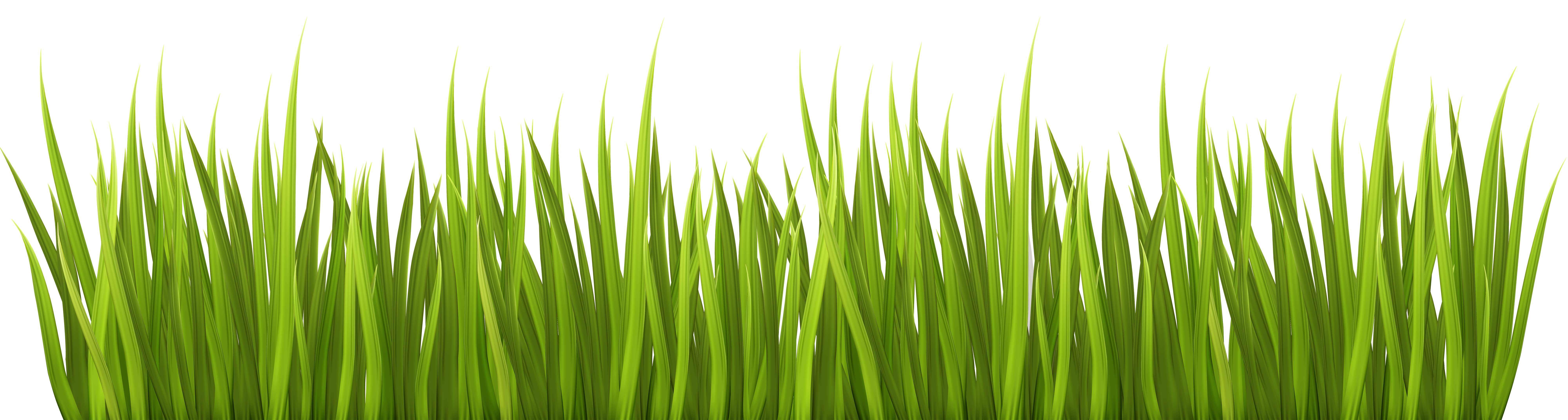 Spring Grass Png Transparent Clip Art Image Gallery Yopriceville - Grass, Transparent background PNG HD thumbnail