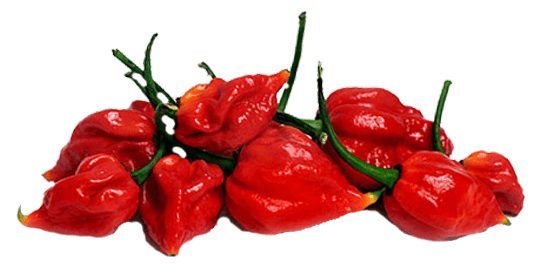 Fired Up Your Passion For Habaneros In Every Bite. - Habanero, Transparent background PNG HD thumbnail