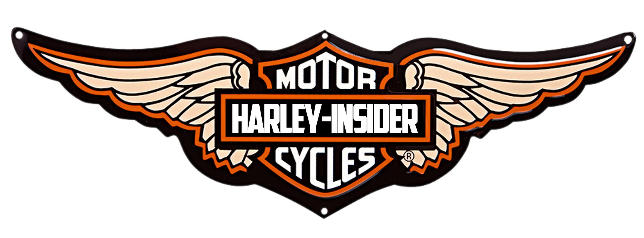 Download Png Image   Harley Davidson Logo Wings Png - Harley Davidson Vector, Transparent background PNG HD thumbnail