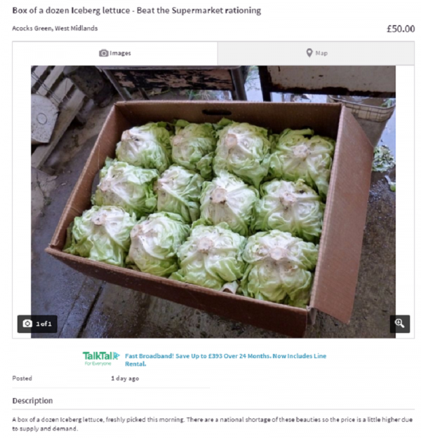 Someone Is Selling Lettuce On Gumtree After The Uk Is Hit By A #lettucecrisis - Hit Someone, Transparent background PNG HD thumbnail