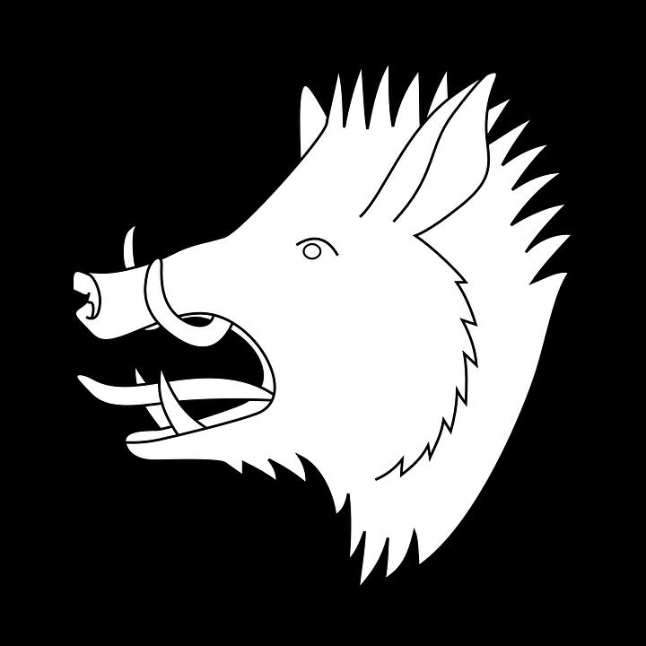 Coat Of Arms, Hog, Head, Pig, Wild, Animal, Boar - Hog Head, Transparent background PNG HD thumbnail