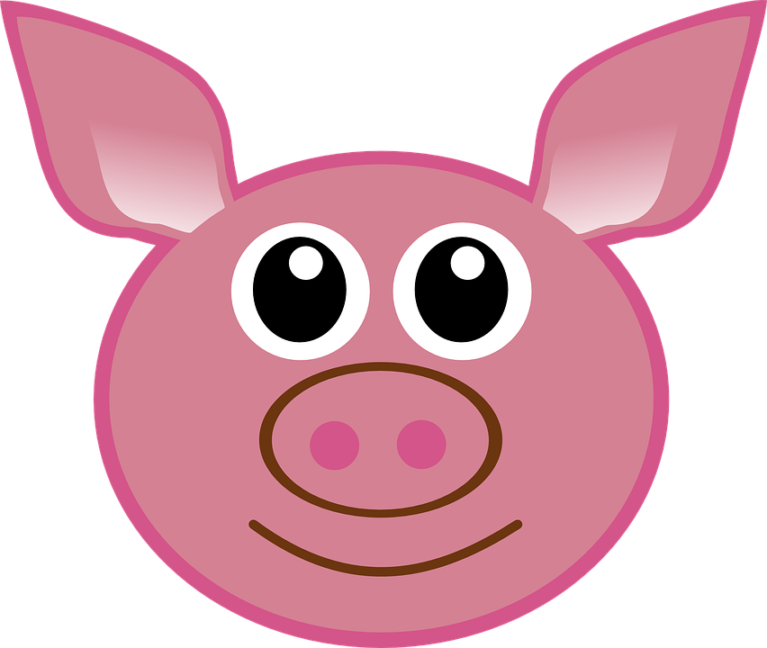 Pig, Head, Cartoon, Cute, Isolated, Piglet, Face, Happy - Hog Head, Transparent background PNG HD thumbnail