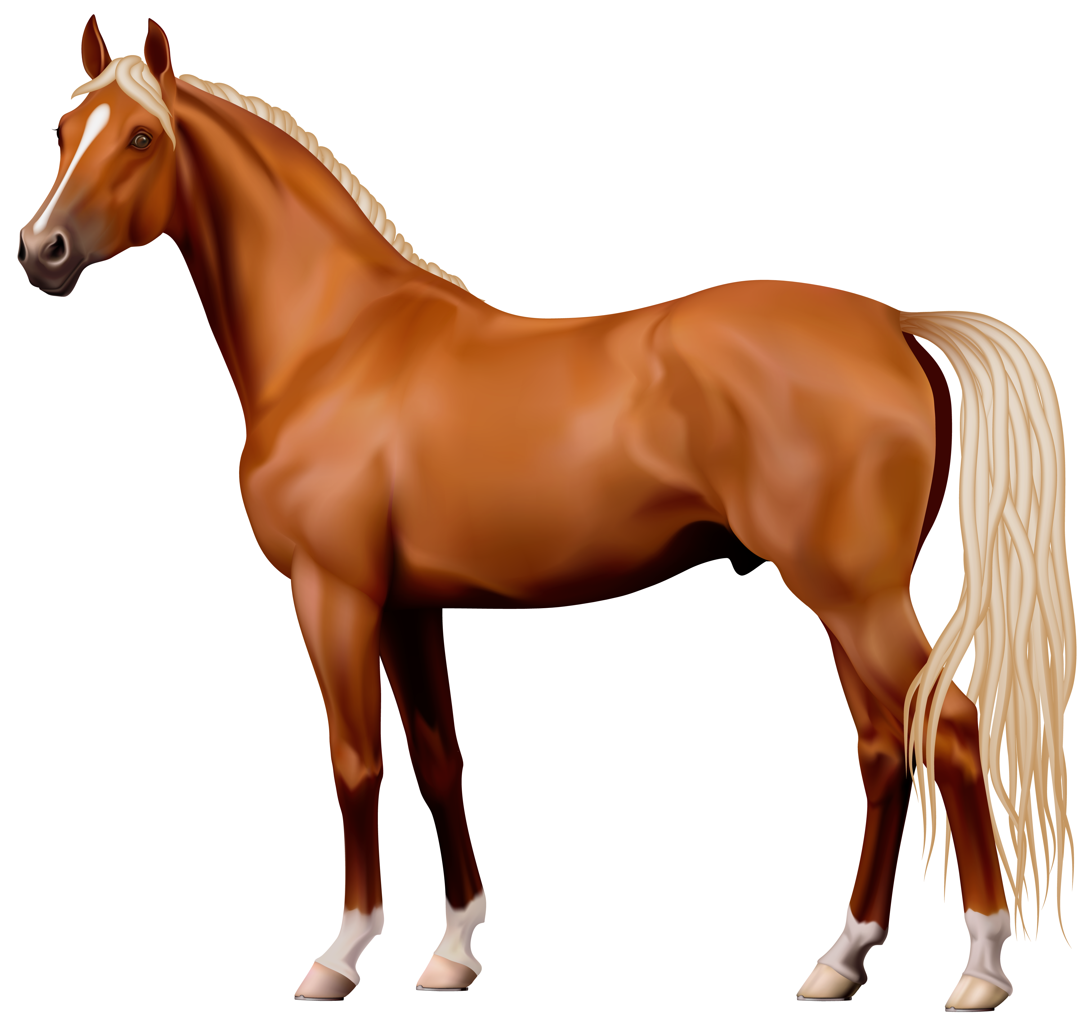 Horse Png Images   Photo#10 - Horse, Transparent background PNG HD thumbnail
