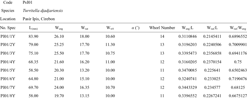 Table 5. The Biometric Measurements Of Turritella Djadjariensis Taken From Pasir Ipis (Psi01) - Ipis, Transparent background PNG HD thumbnail