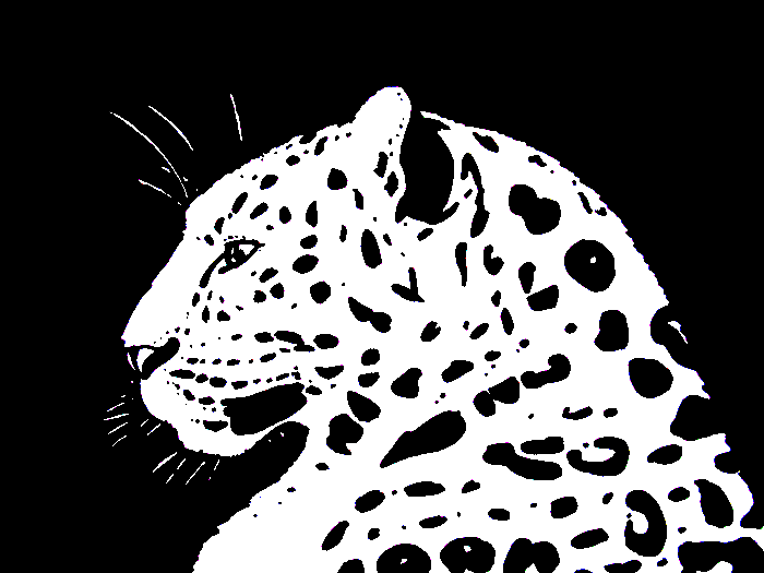 Leopard PNG Black And White