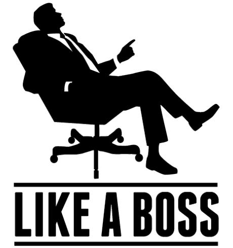 Like A Boss Png - Like A Boss Transparent Background, Transparent background PNG HD thumbnail
