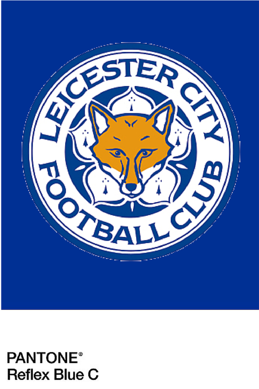 Massive Congratulations To Leicester City Fc. Very Proud To Be A Leicester Based Business U2013 - Leicester City Fc, Transparent background PNG HD thumbnail