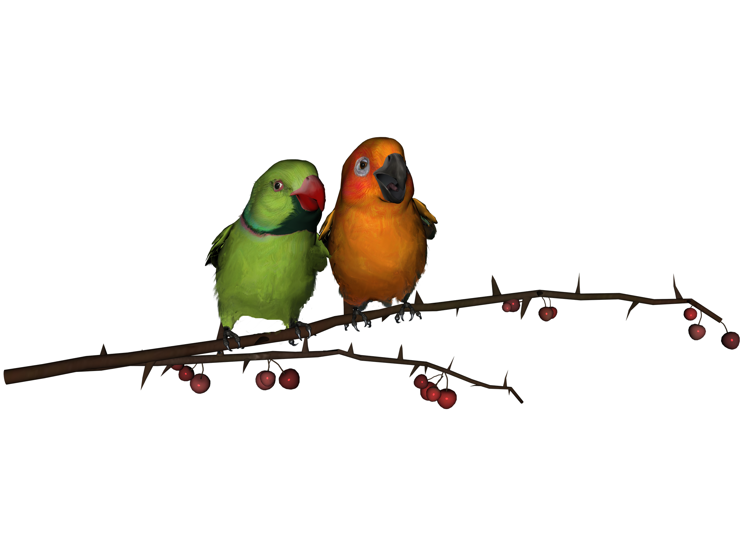 Love Birds Png - Pluspng, Transparent background PNG HD thumbnail