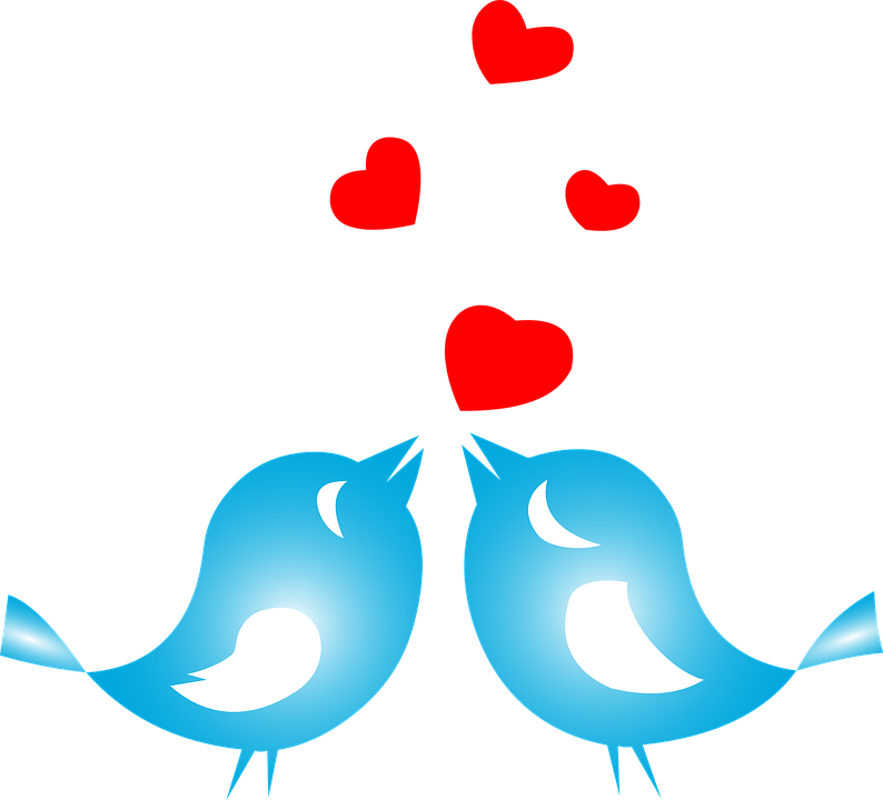 Love Birds Png - Love, Birds, Animals, Flying, Hearts, Romance, Couple, Transparent background PNG HD thumbnail