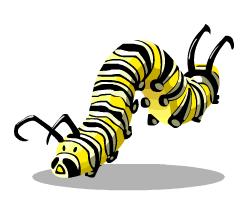 Monarch Caterpillar.png - Caterpillar, Transparent background PNG HD thumbnail
