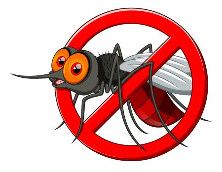 Mosquito.png - Mosquito, Transparent background PNG HD thumbnail