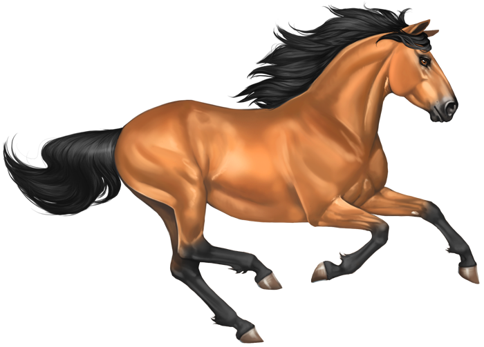 Mustang Horse Png Image - Horse, Transparent background PNG HD thumbnail