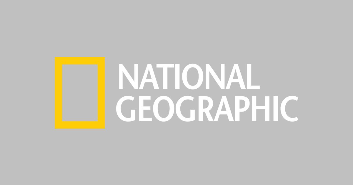 Kidsu0027 Games, Animals, Photos, Stories, And More    National Geographic Kids - National Geographic Vector, Transparent background PNG HD thumbnail